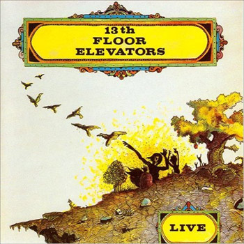 the 13th floor elevators live 1968 rising storm review